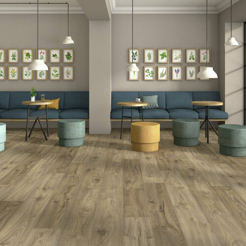 Forest D7093 Ambiente